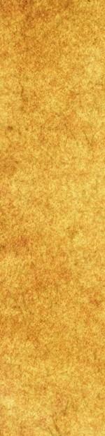 Parchment Banner2